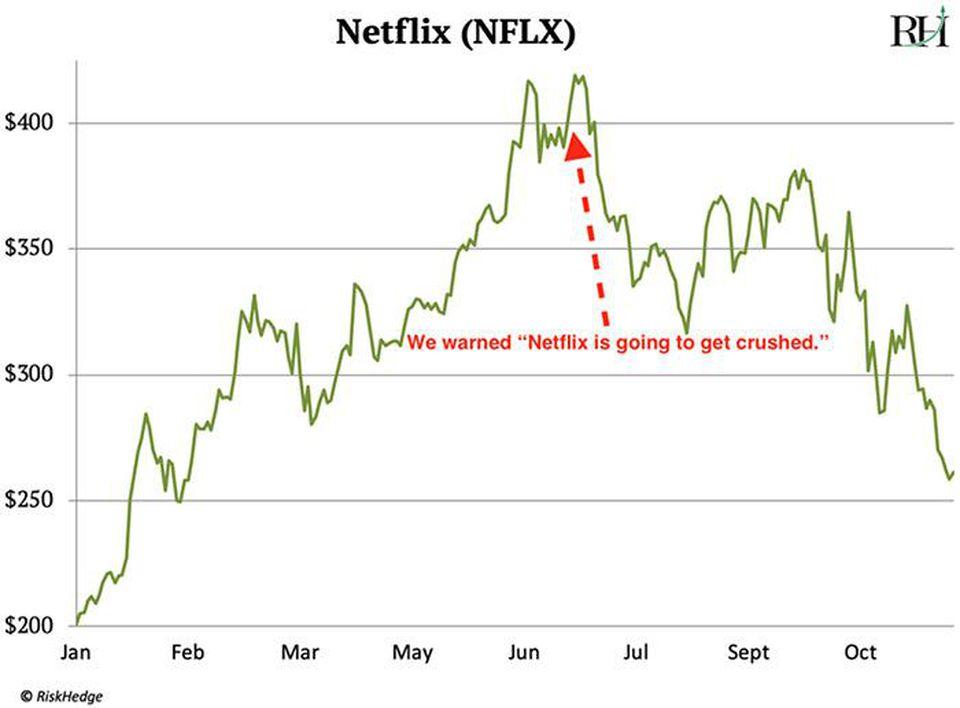 riskhedge netflix stock